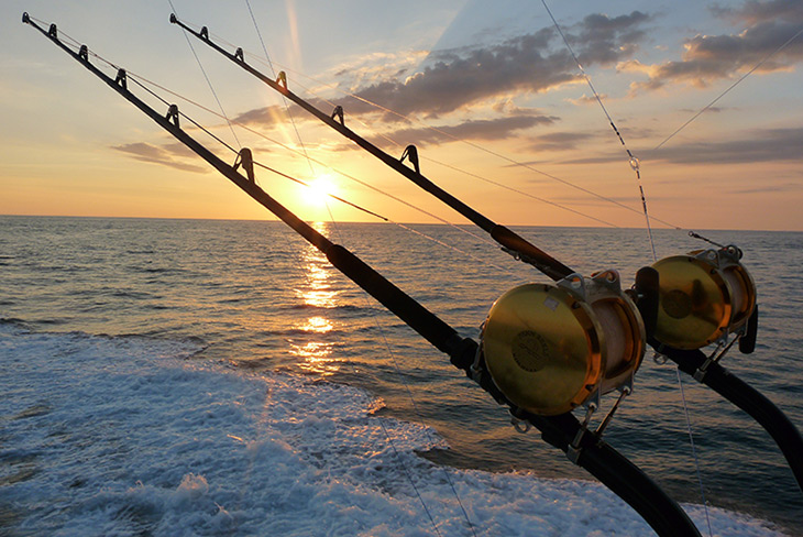 HD Quality Wallpaper | Collection: Sports, 730x488 Fishing