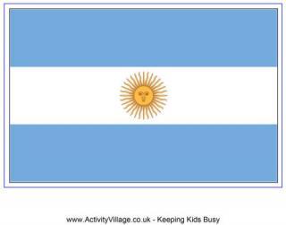 Flag Of Argentina #24