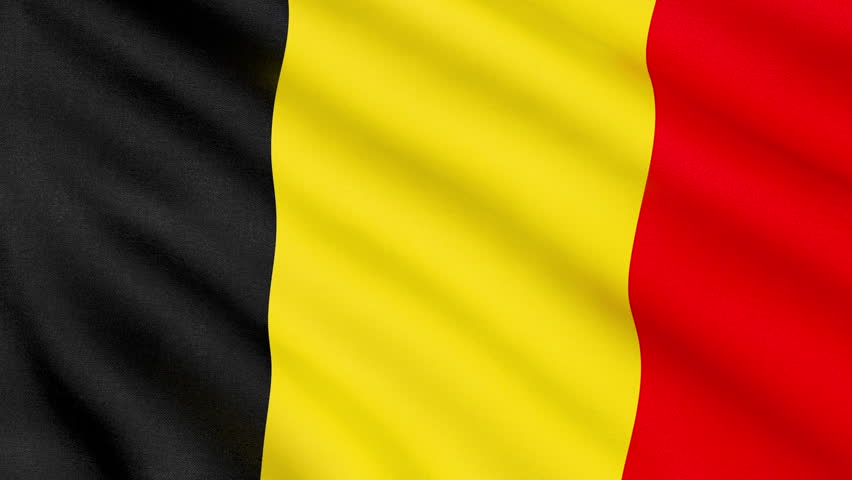 Flag Of Belgium #22