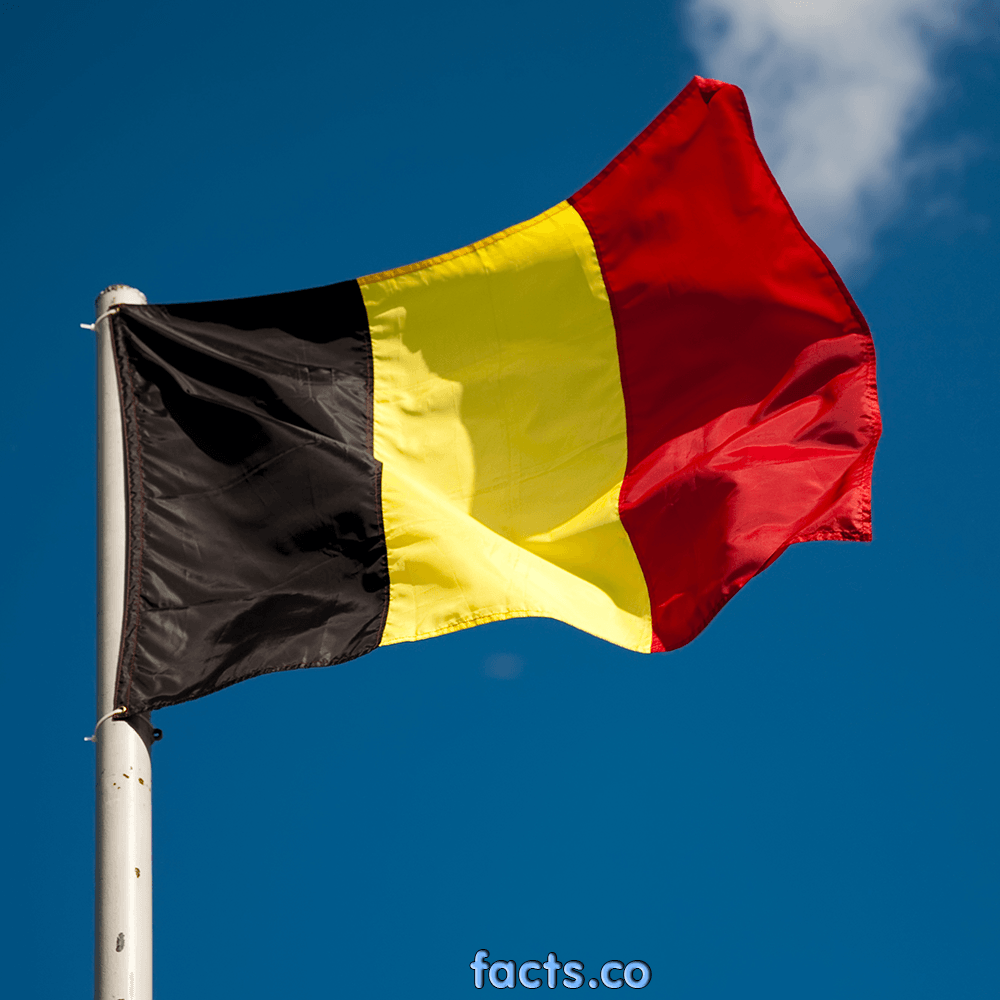 Flag Of Belgium Backgrounds, Compatible - PC, Mobile, Gadgets| 1000x1000 px