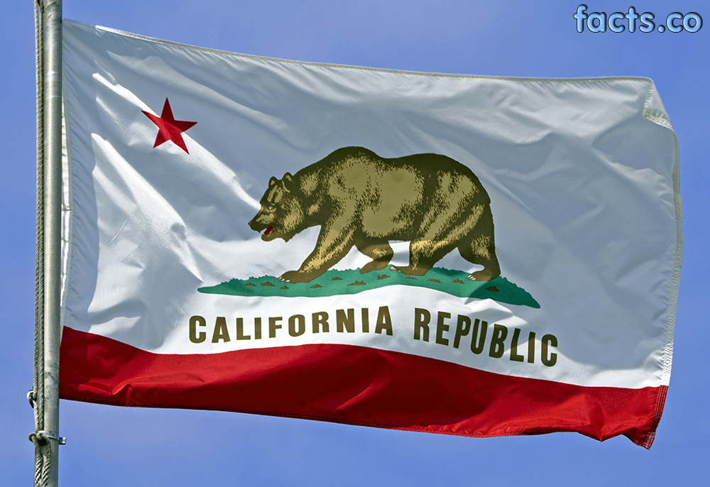 High Resolution Wallpaper | Flag Of California 1000x686 px