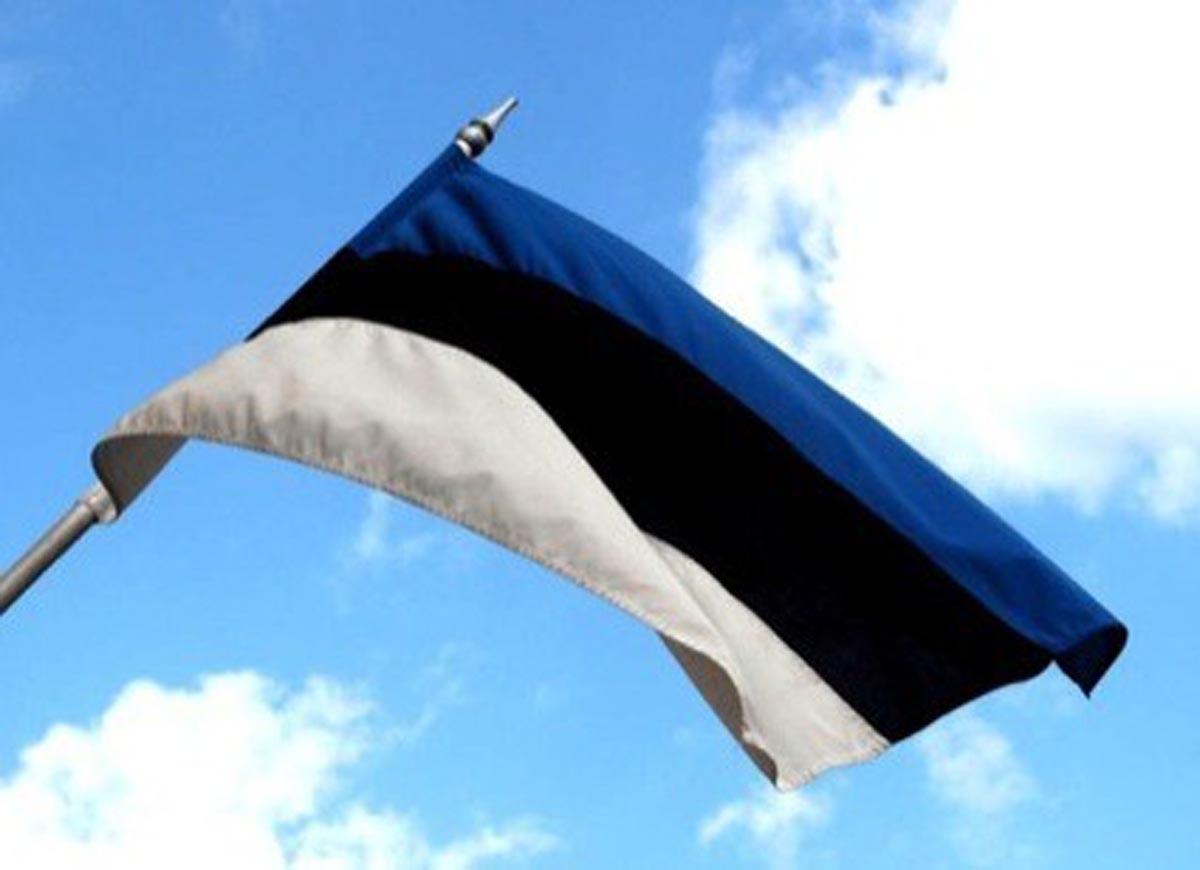 Flag Of Estonia Backgrounds, Compatible - PC, Mobile, Gadgets| 1200x870 px