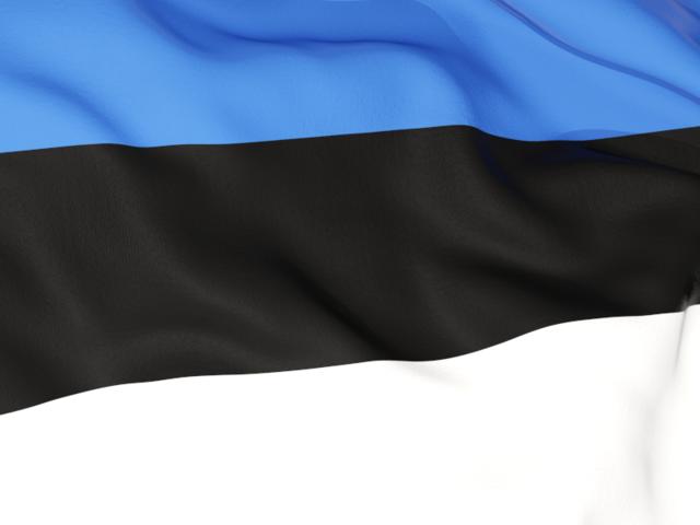 Flag Of Estonia Backgrounds, Compatible - PC, Mobile, Gadgets| 640x480 px