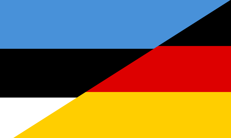 HQ Flag Of Estonia Wallpapers | File 10.05Kb