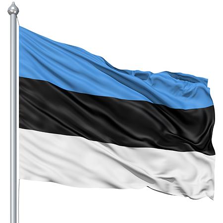 HQ Flag Of Estonia Wallpapers | File 115.93Kb