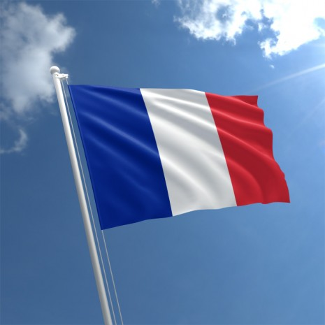 Amazing Flag Of France Pictures & Backgrounds