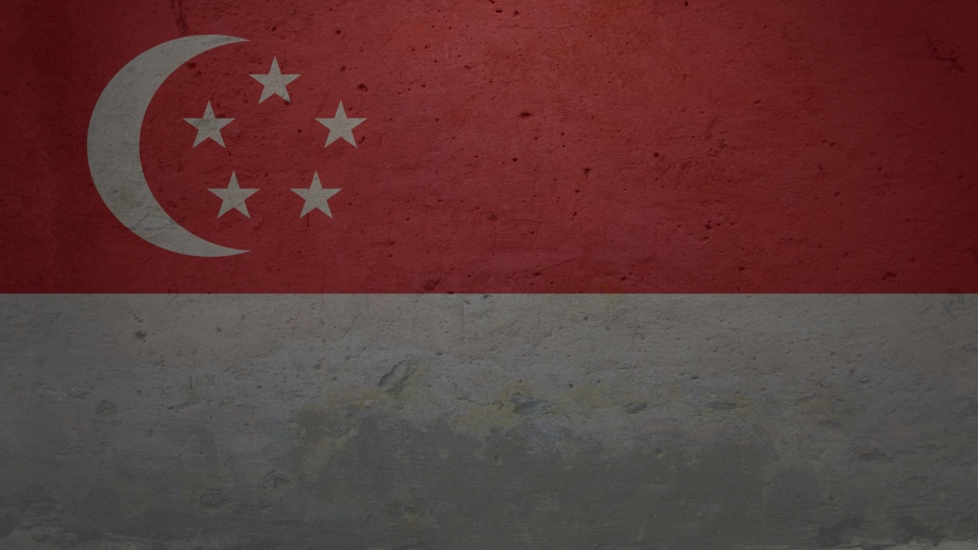 Flag Of Latveria #9