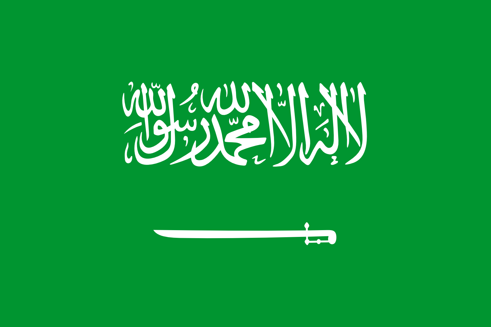 HD Quality Wallpaper | Collection: Misc, 1600x1067 Flag Of Saudi Arabia