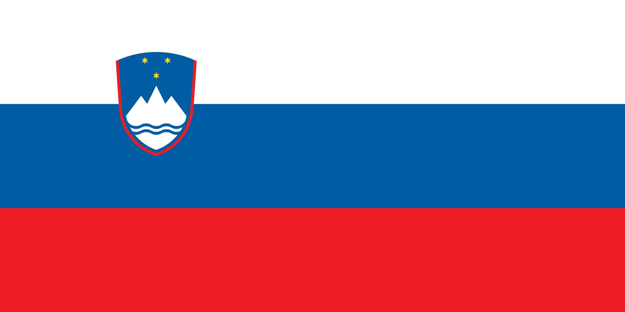 Flag Of Slovenia #1