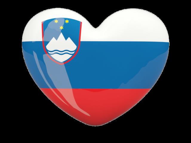Flag Of Slovenia #20
