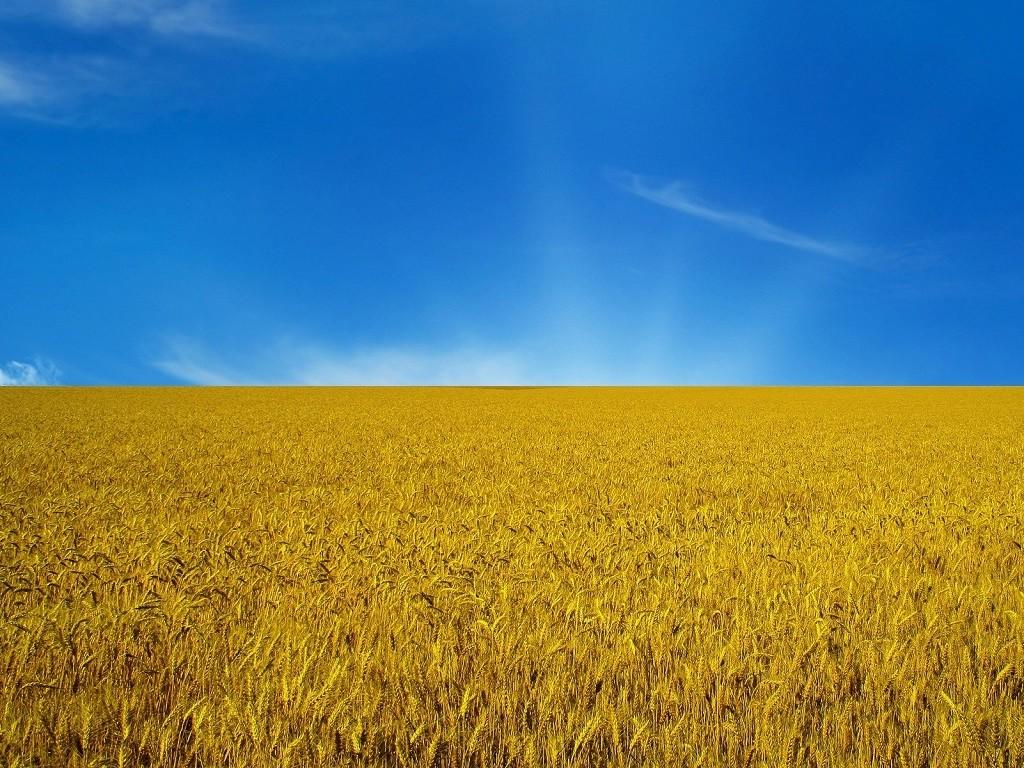 HQ Flag Of Ukraine Wallpapers   File 272.74Kb
