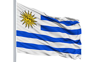 Flag Of Uruguay Pics, Misc Collection