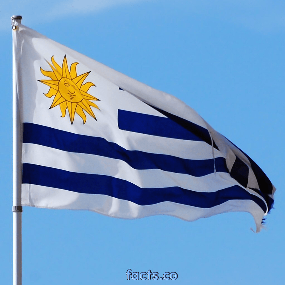 HD Quality Wallpaper   Collection: Misc, 1000x1000 Flag Of Uruguay