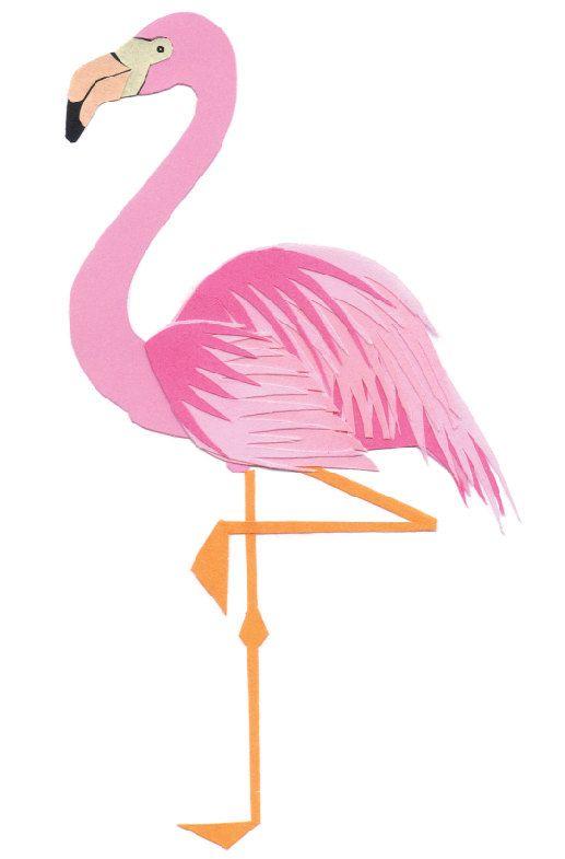 HQ Flamingo Wallpapers | File 24.26Kb