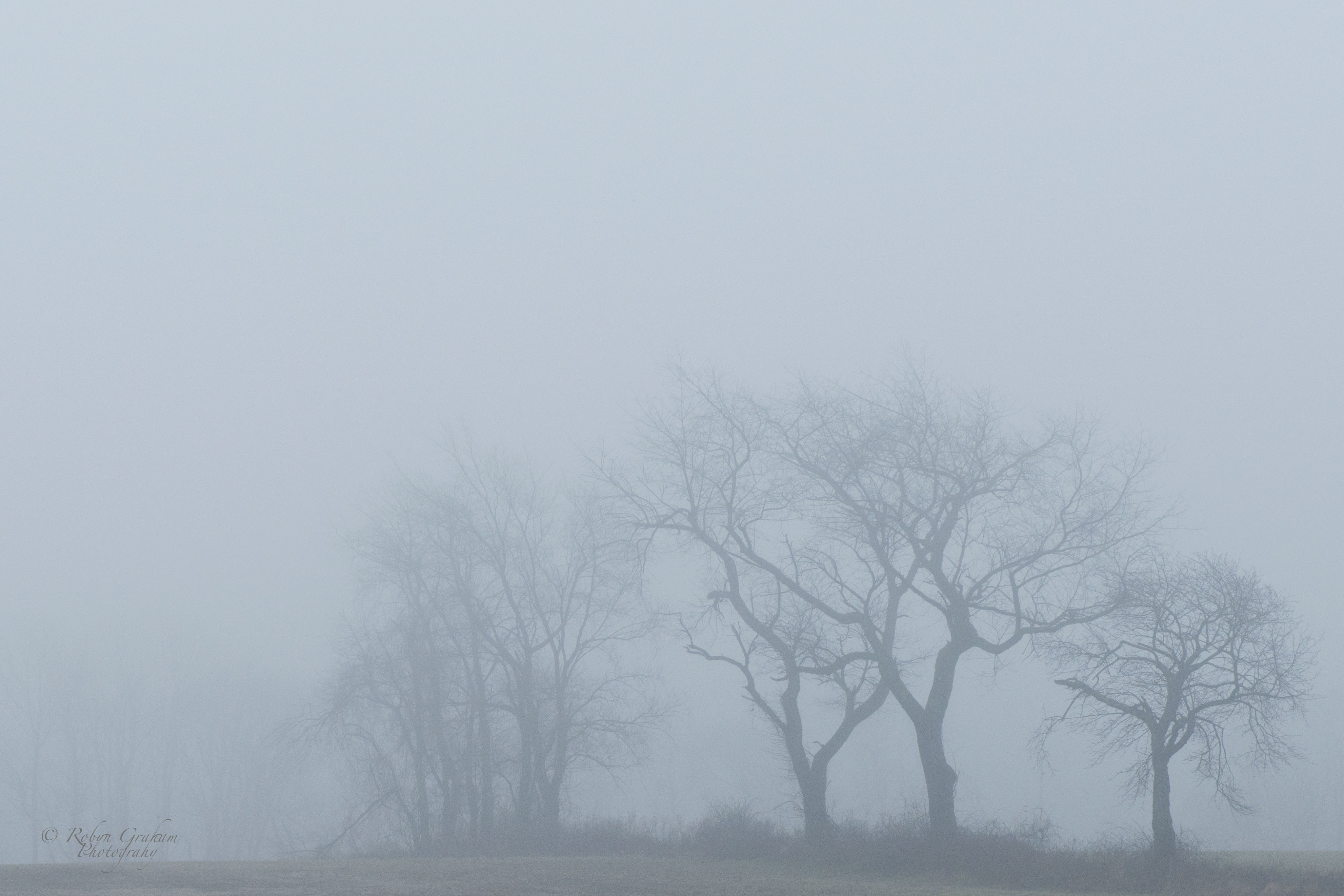 4099x2733 > Fog Wallpapers