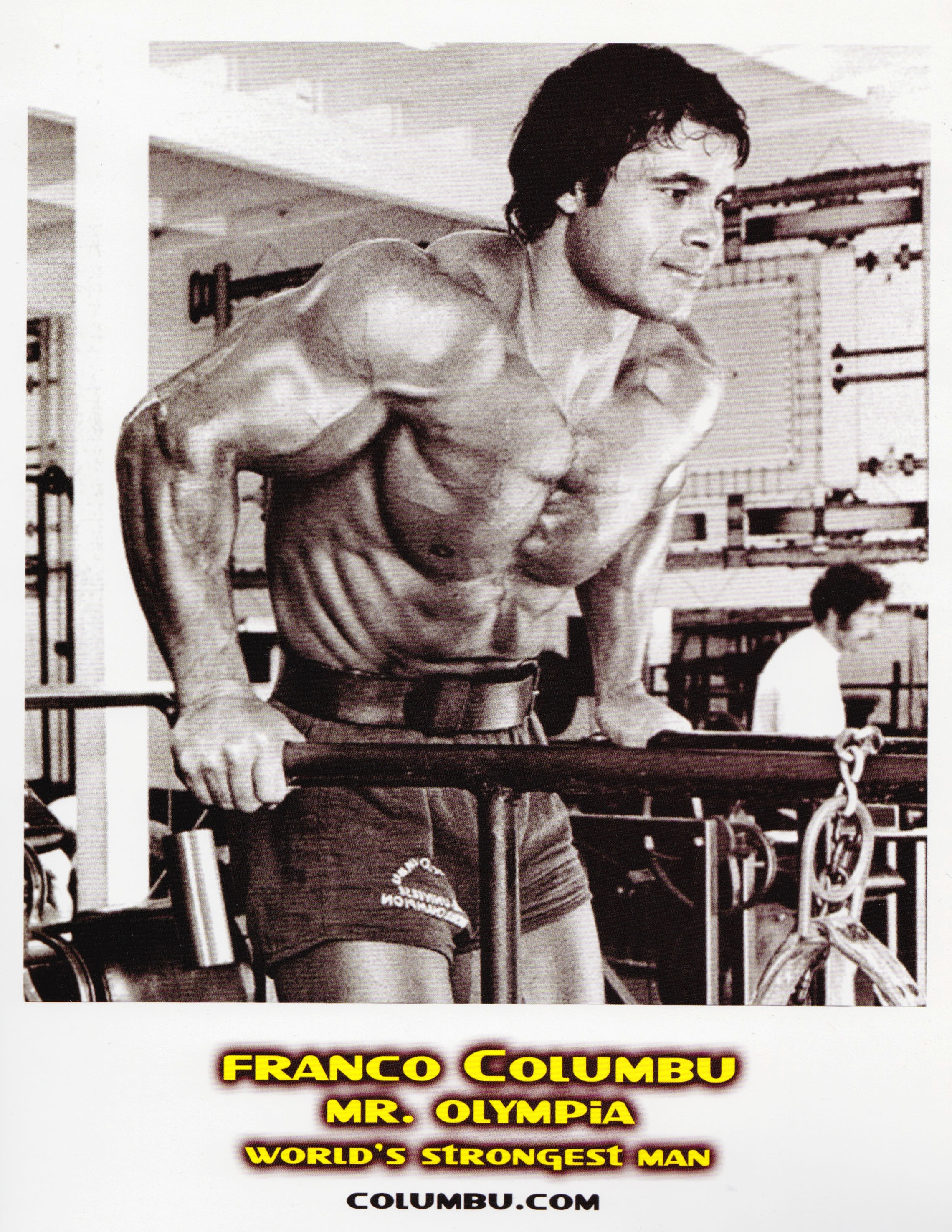 Franco Columbu Backgrounds, Compatible - PC, Mobile, Gadgets| 2280x2951 px