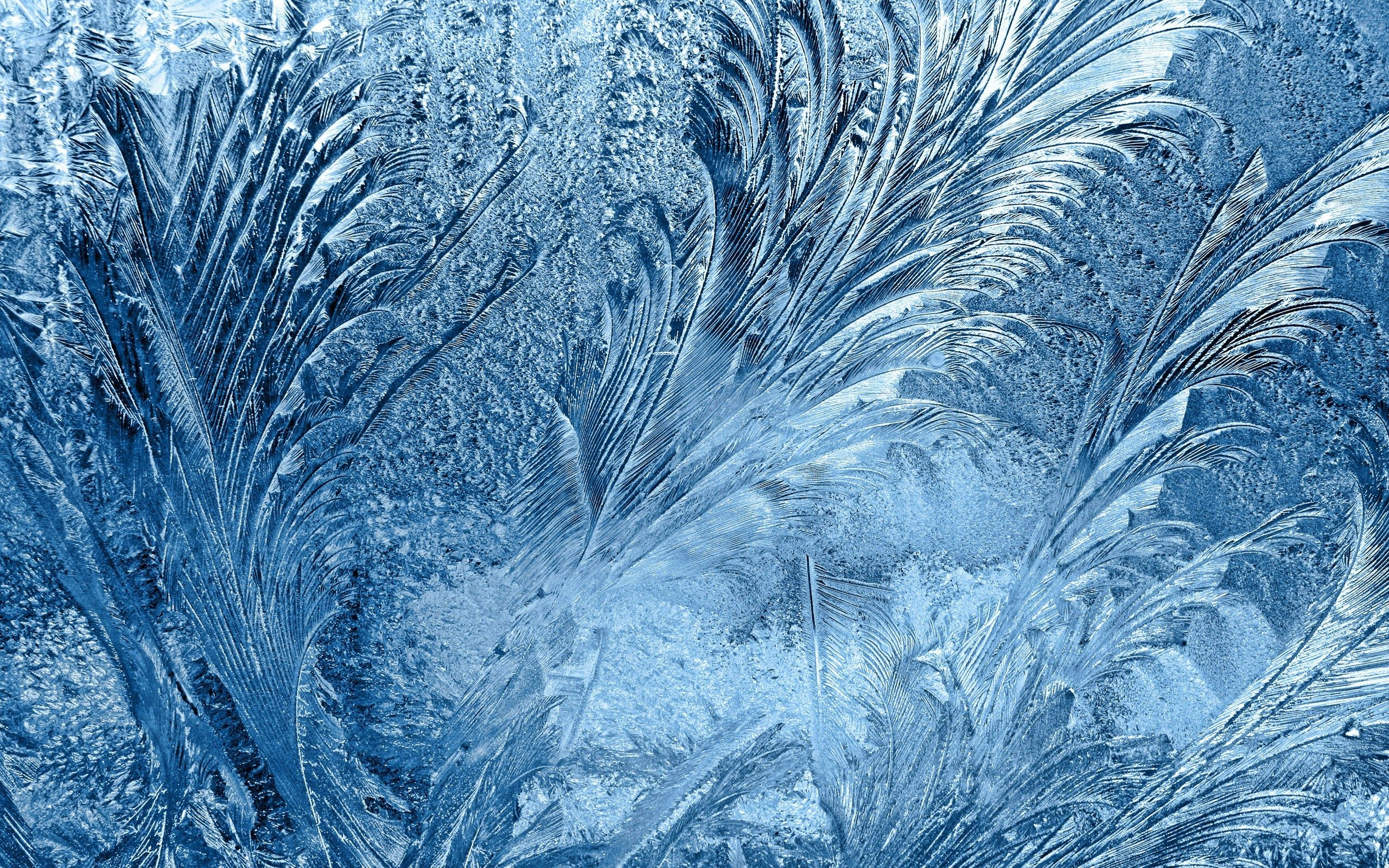 Frost Backgrounds, Compatible - PC, Mobile, Gadgets| 2560x1600 px