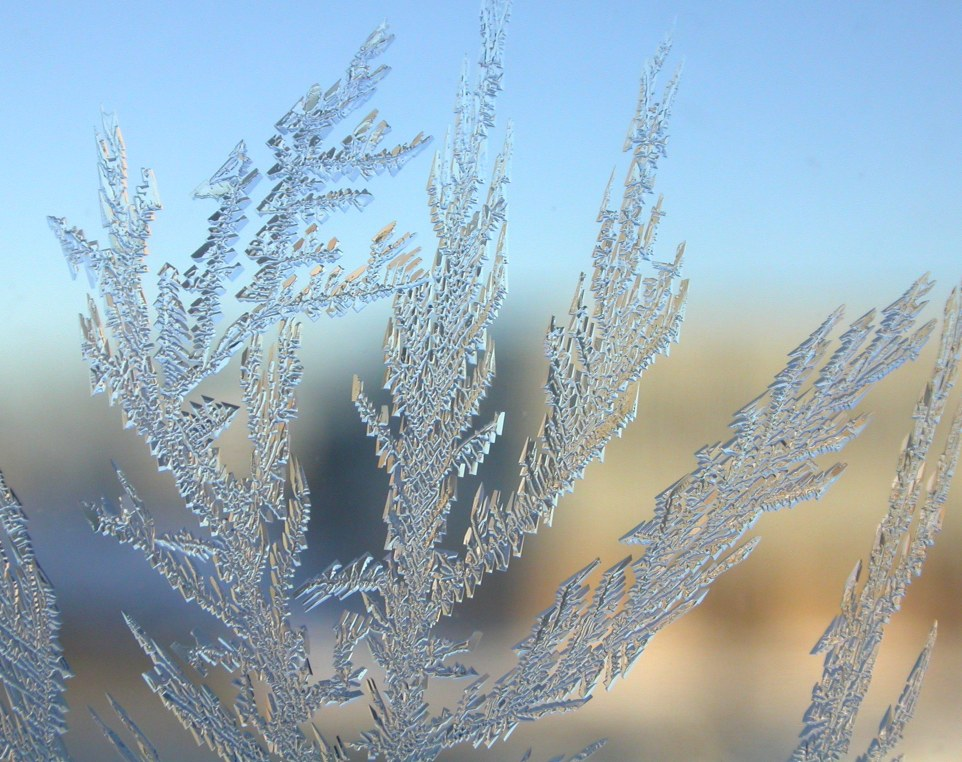 Images of Frost | 962x762