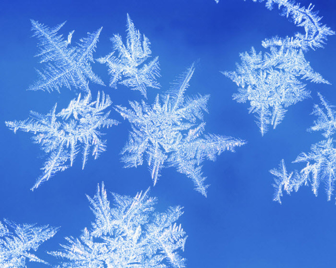 Frost Backgrounds on Wallpapers Vista