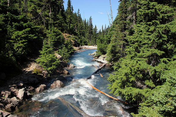 Images of Garibaldi Lake   595x397