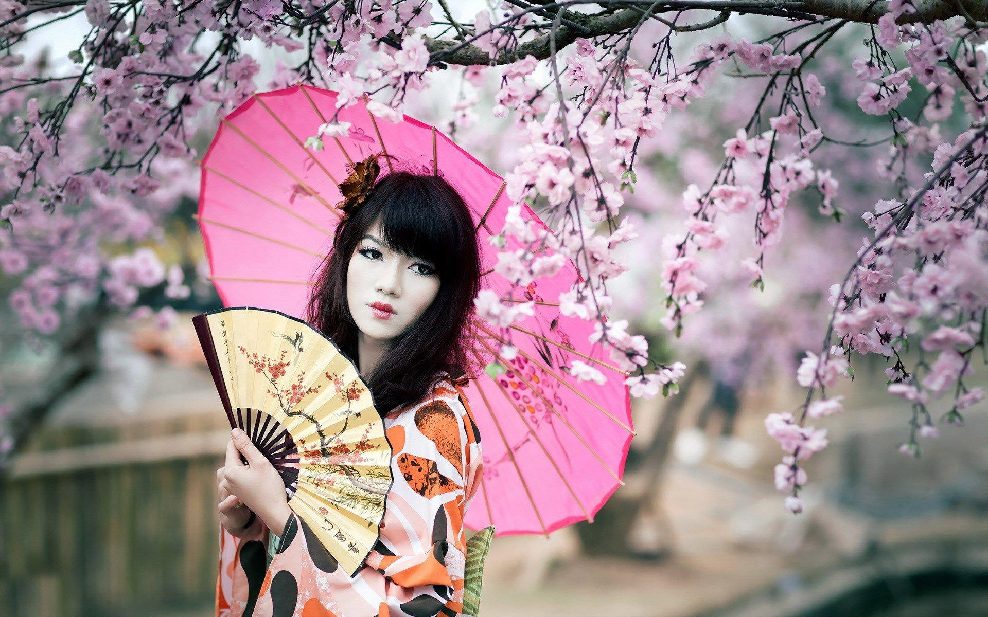 Amazing Geisha Pictures & Backgrounds