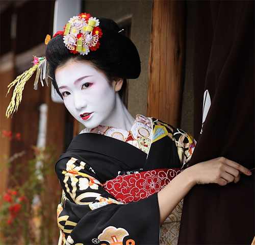 Geisha Backgrounds, Compatible - PC, Mobile, Gadgets| 500x480 px