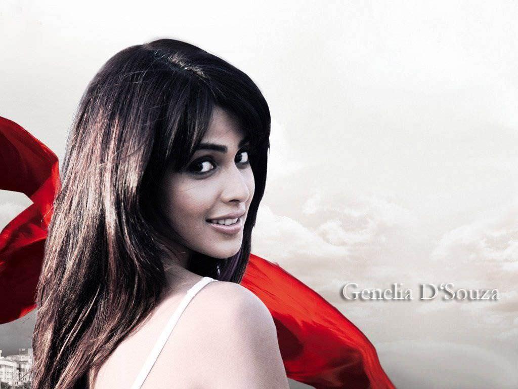 Genelia D'souza Backgrounds, Compatible - PC, Mobile, Gadgets| 1024x768 px