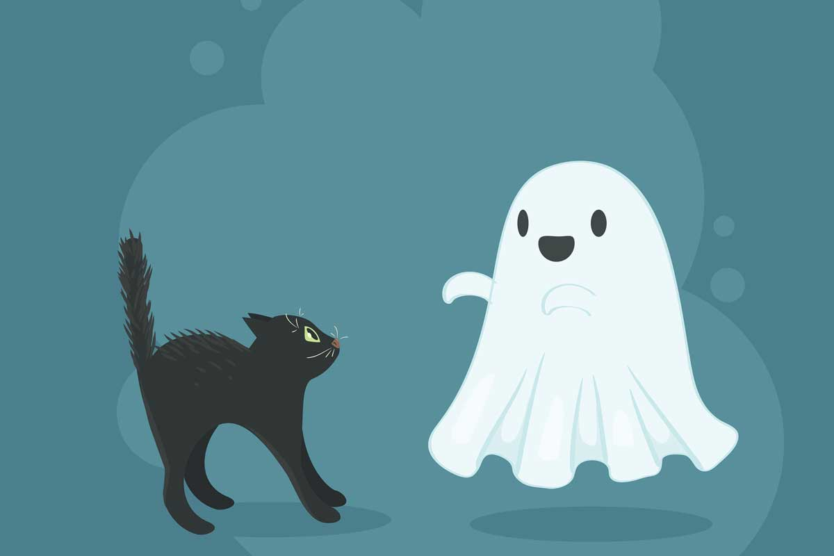 Ghost Backgrounds, Compatible - PC, Mobile, Gadgets| 1200x800 px