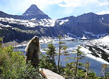 Nice wallpapers Glacier National Park 220x160px