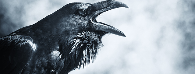 640x243 > Gothic Wallpapers
