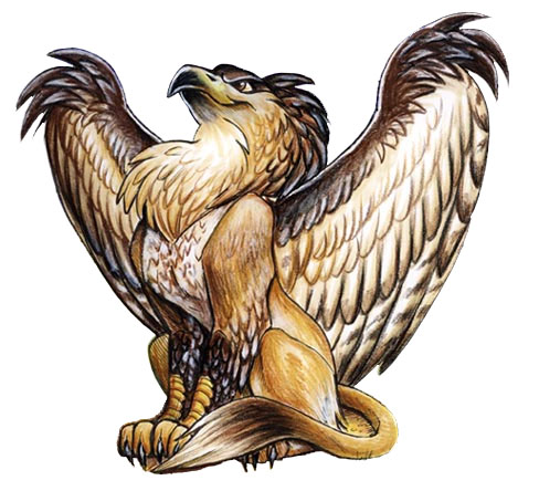 Nice wallpapers Griffin 488x444px