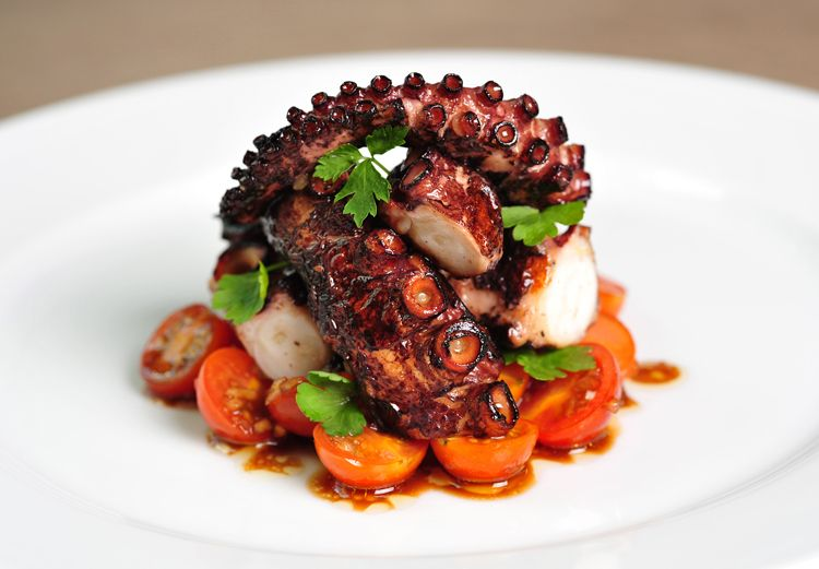 Amazing Grilled Octopus Pictures & Backgrounds