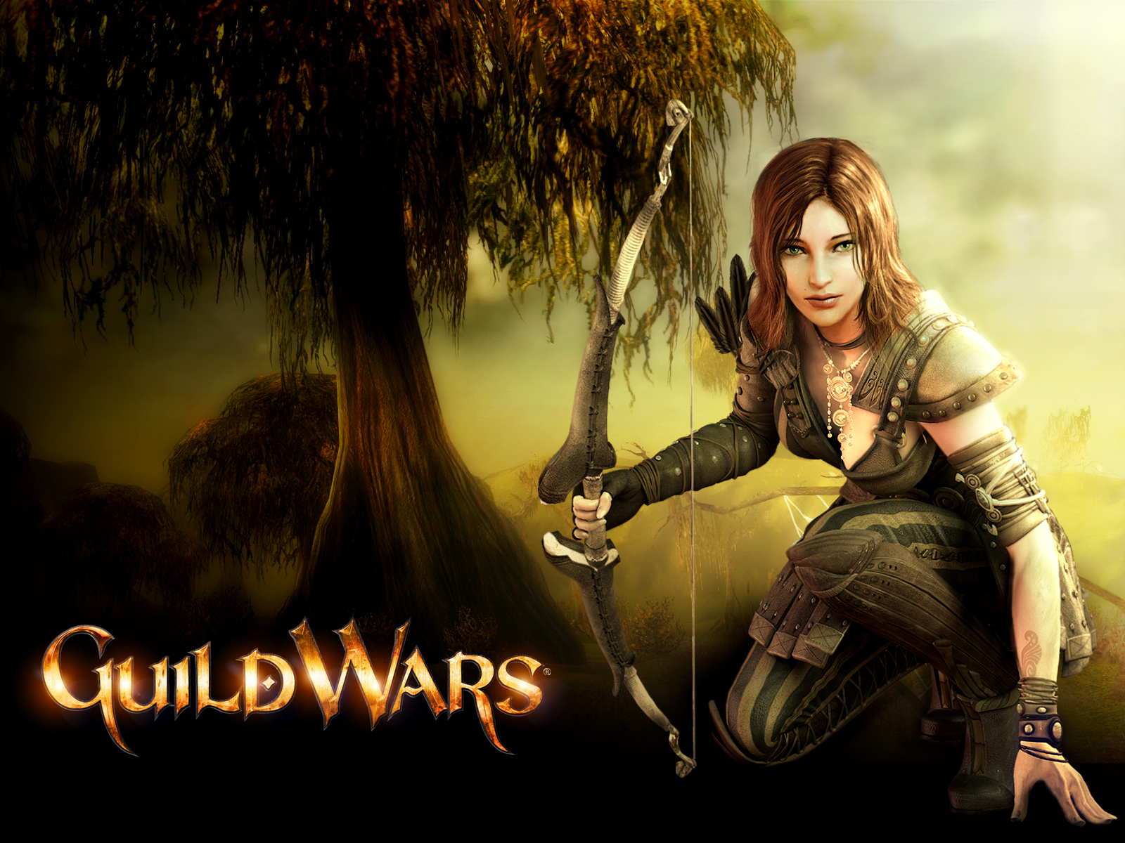 Guild Wars Pics, Video Game Collection