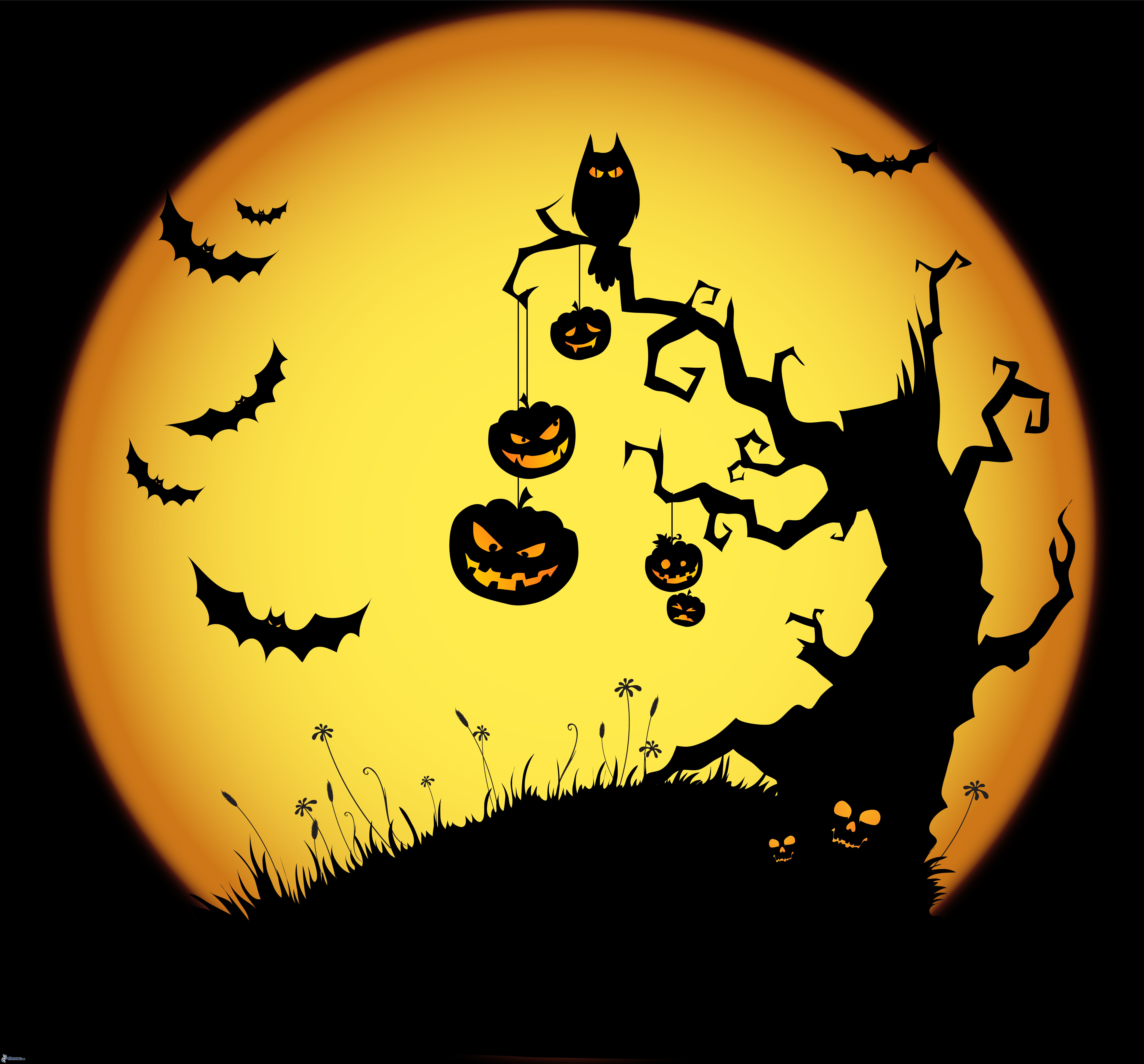 Amazing Halloween Pictures & Backgrounds