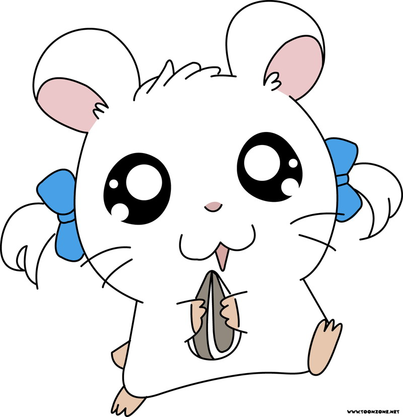 High Resolution Wallpaper | Hamtaro 800x828 px