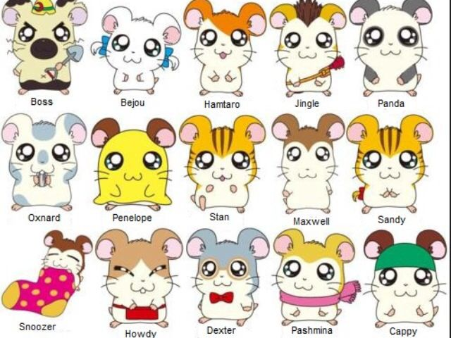 Nice Images Collection: Hamtaro Desktop Wallpapers
