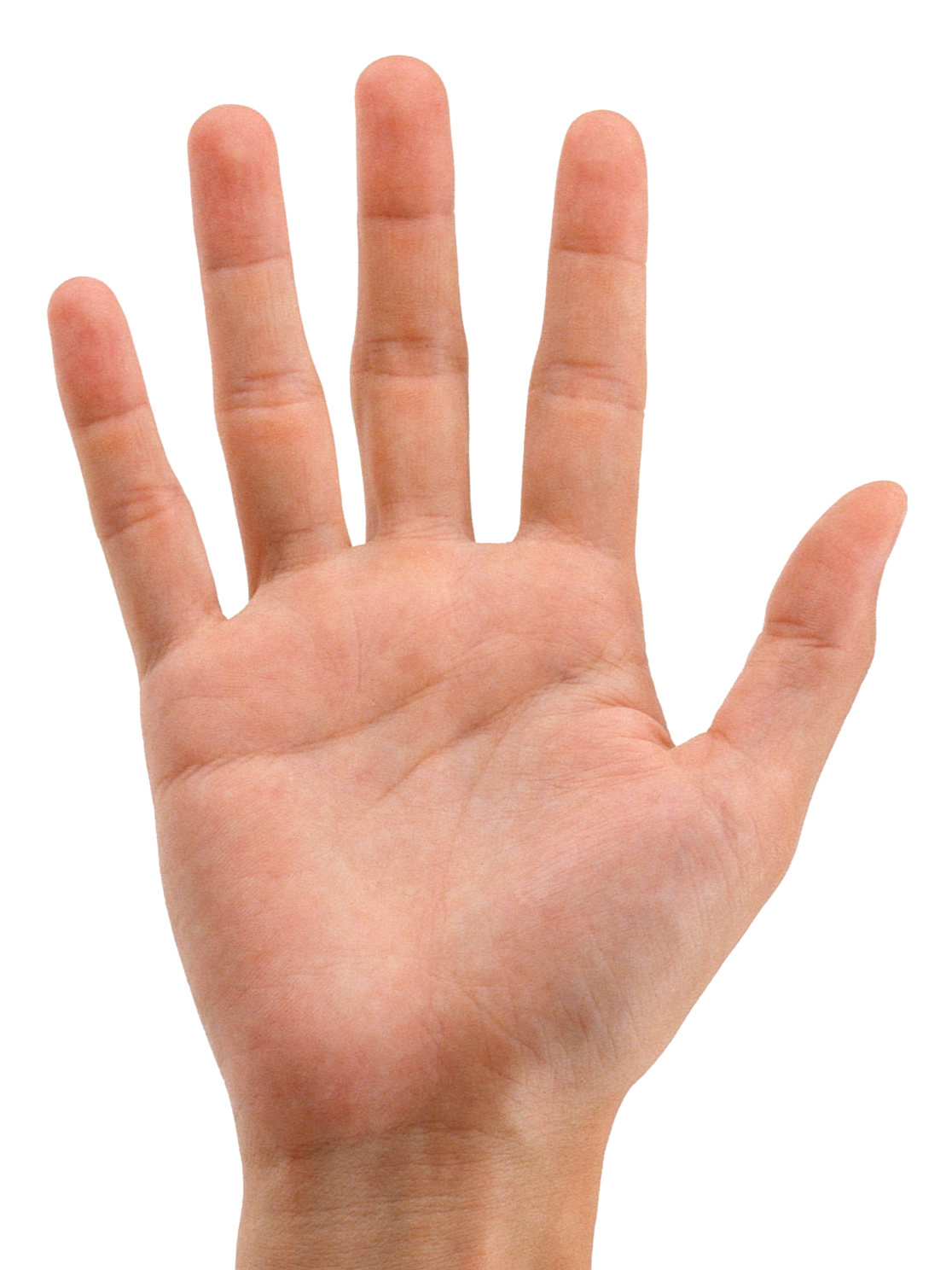 Hand Backgrounds on Wallpapers Vista