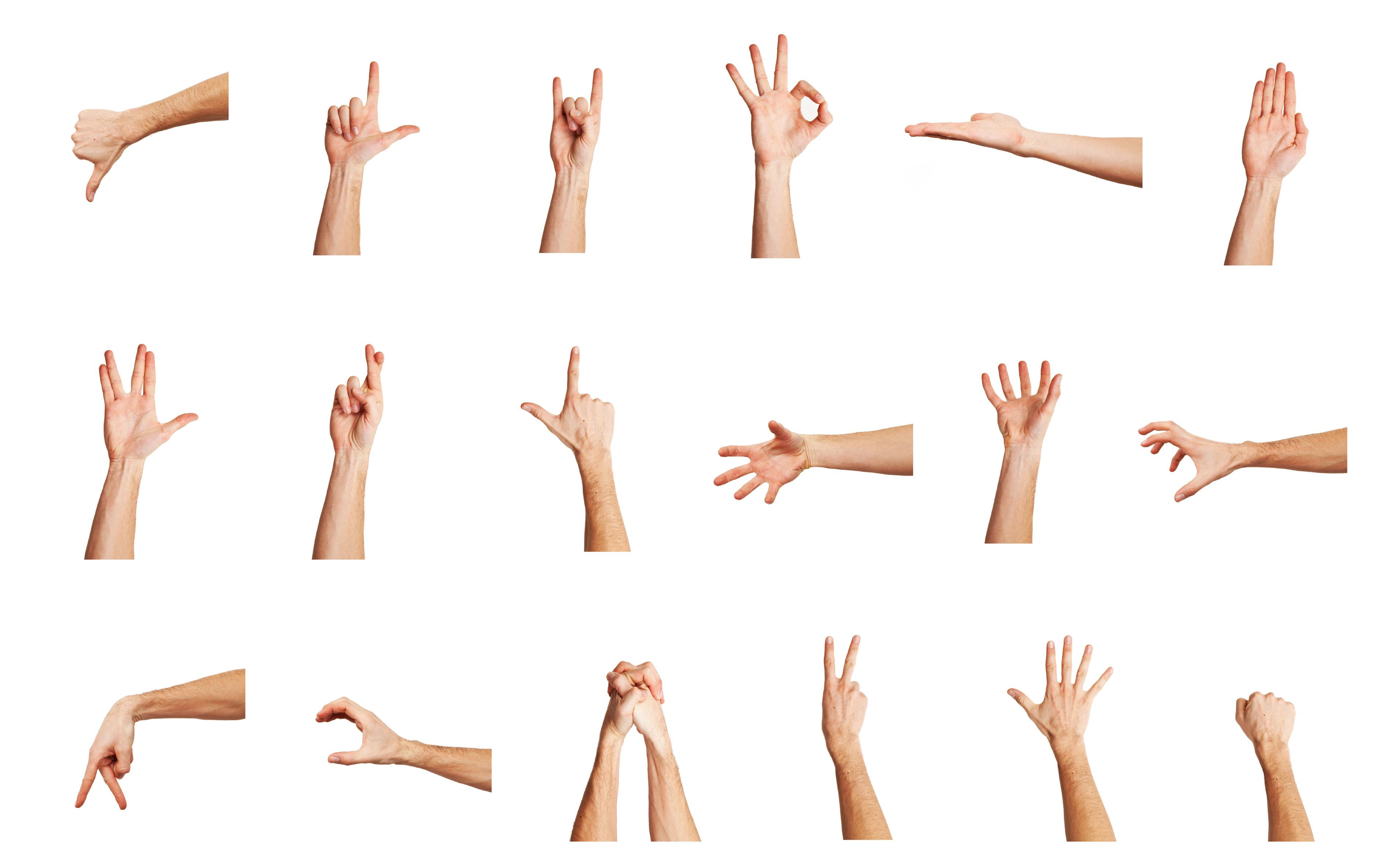 Hand Gesture #8