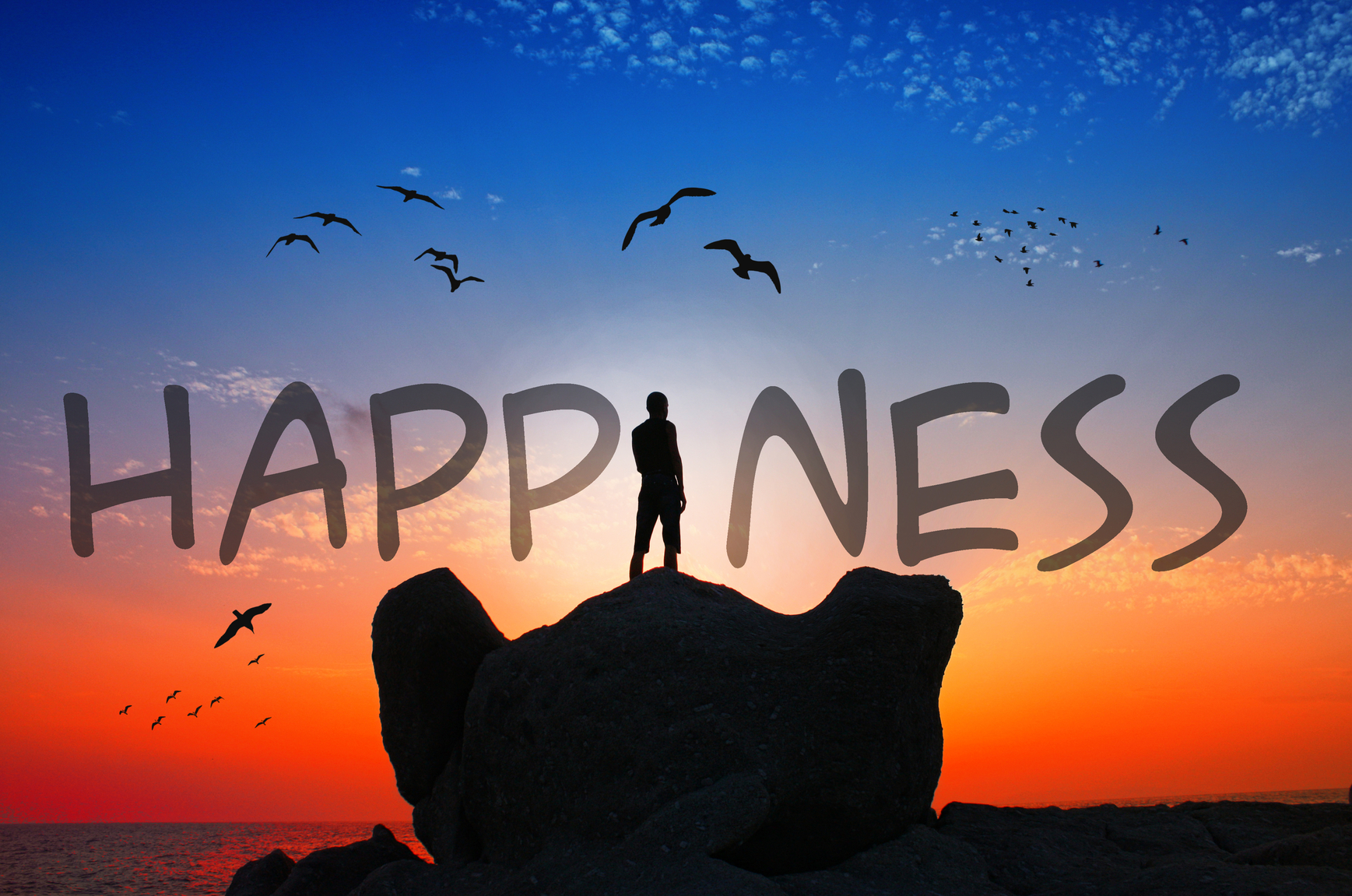 High Resolution Wallpaper | Happiness! 1737x1151 px