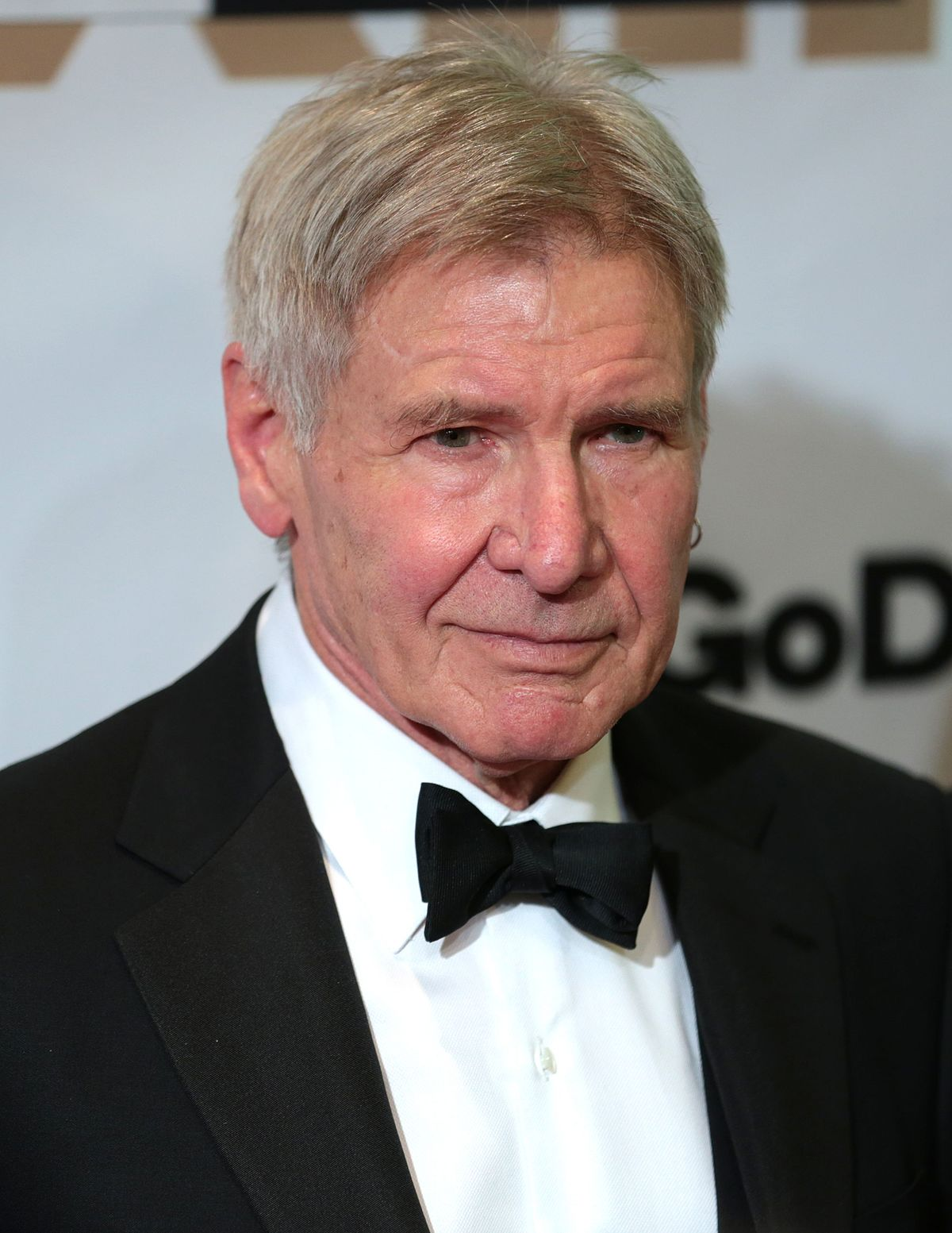 HQ Harrison Ford Wallpapers | File 174.42Kb