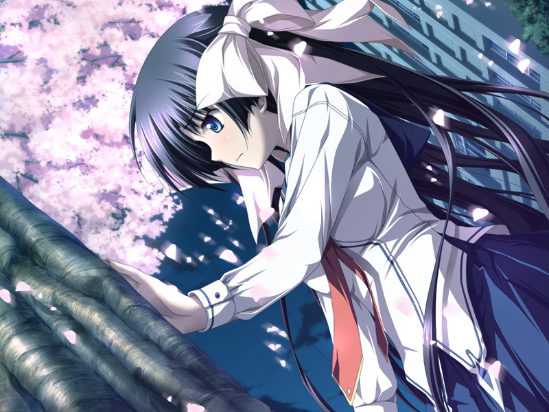 Amazing Haruiro Ouse Pictures & Backgrounds