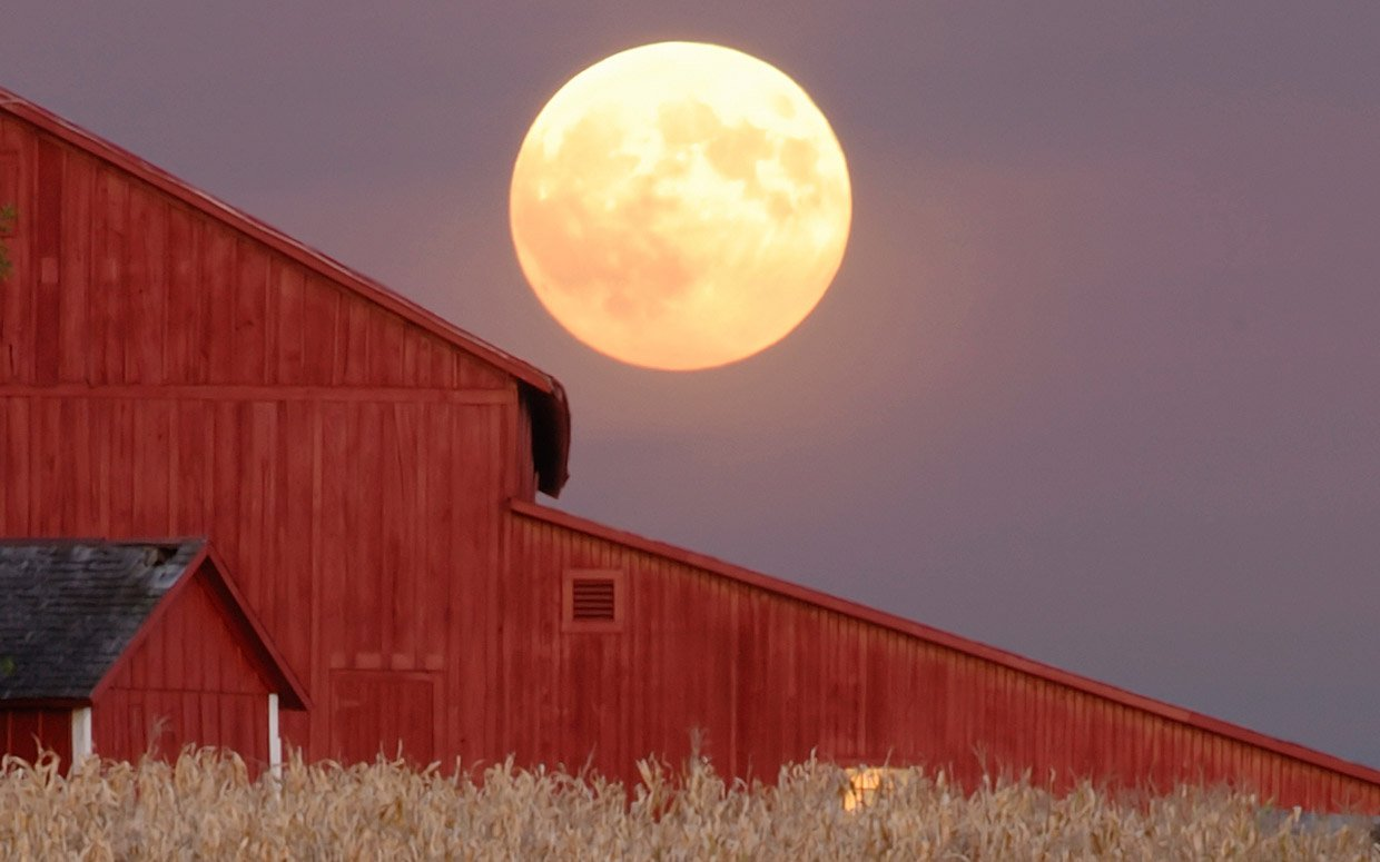 Harvest Moon Backgrounds on Wallpapers Vista