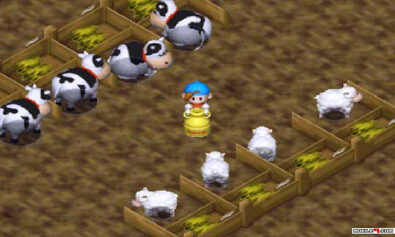 Nice Images Collection: Harvest Moon 64 Desktop Wallpapers