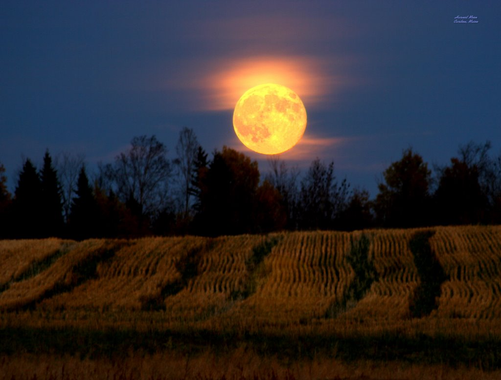 Amazing Harvest Moon Pictures & Backgrounds