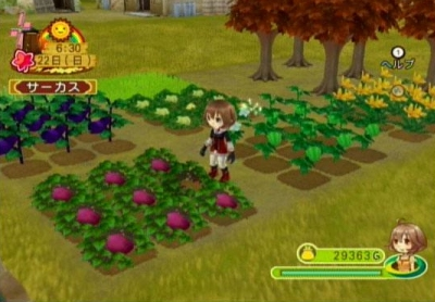 Harvest Moon: Animal Parade Pics, Video Game Collection