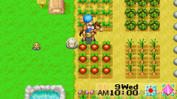 Harvest Moon: Friends Of Mineral Town Pics, Video Game Collection