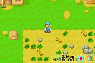 360x240 > Harvest Moon: Friends Of Mineral Town Wallpapers