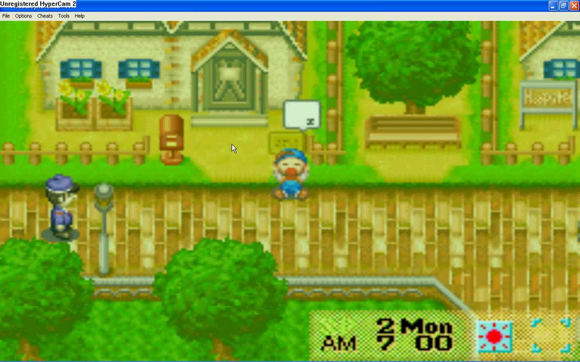 High Resolution Wallpaper | Harvest Moon: Friends Of Mineral Town 1152x720 px
