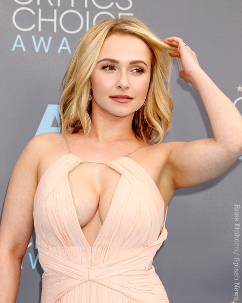 Hayden Panettiere Backgrounds on Wallpapers Vista