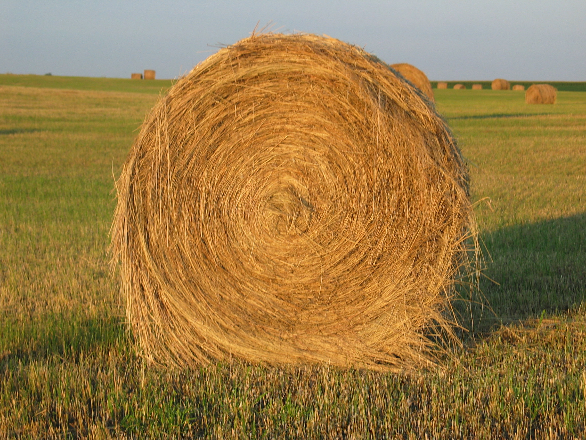 Amazing Haystack Pictures & Backgrounds
